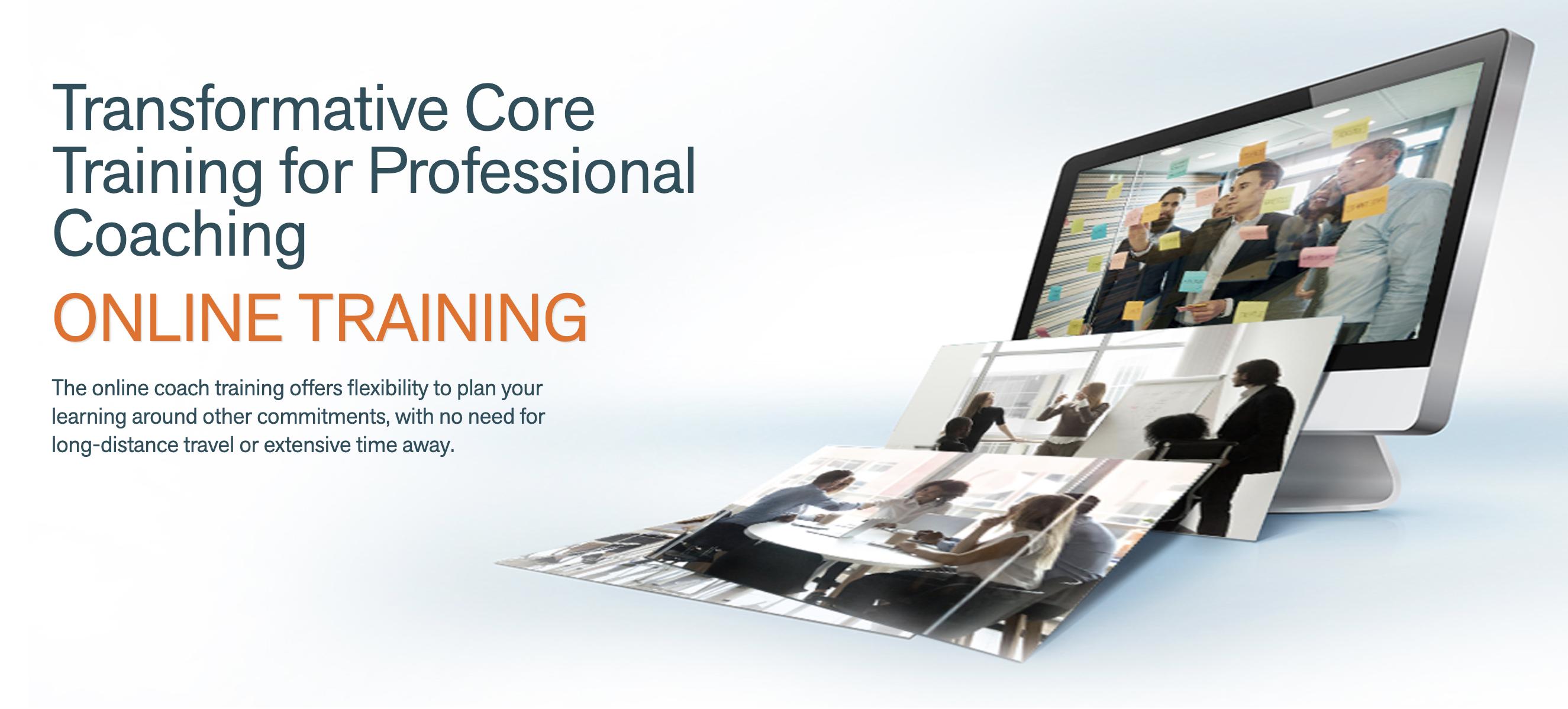 executive coaching course training